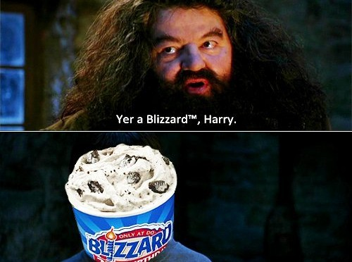 Yer a Blizzard, Harry!