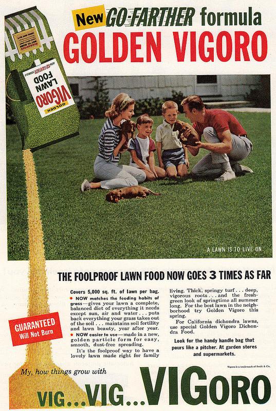 Vigoro print ad, 1960
