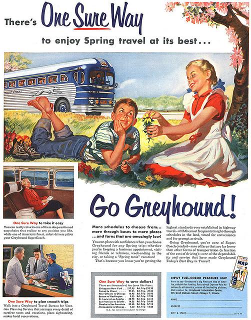 Greyhound, 1953