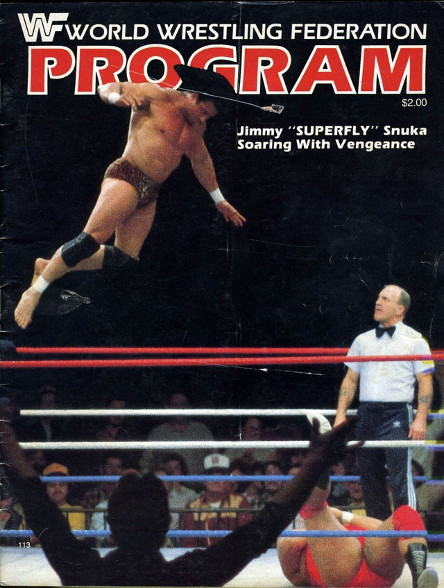 World Wrestling Federation Program - 1984