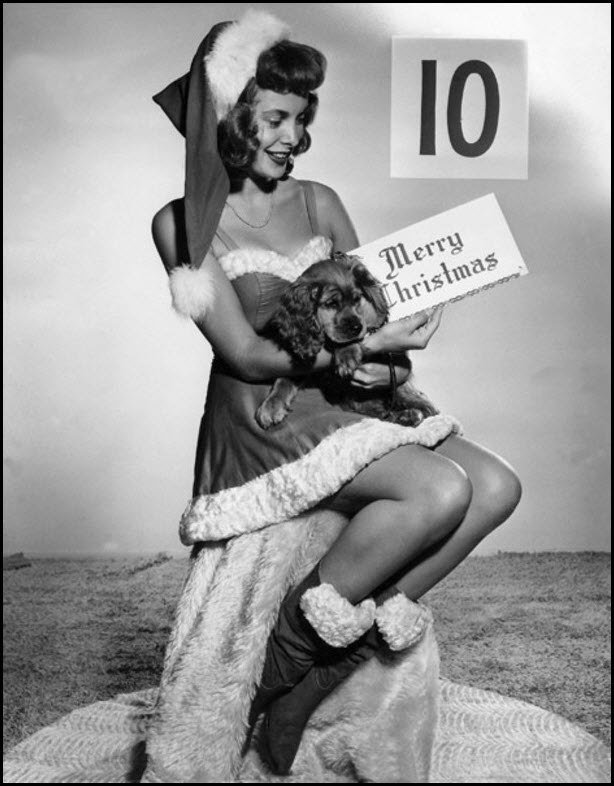 Vintage Christmas pinup - Janet Leigh